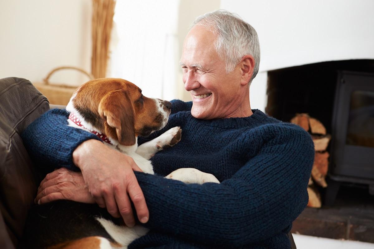 Les bienfaits de l'animal dans un contexte thérapeutique